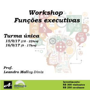 2017 - agosto - workshop ibneuro funcoes executivas